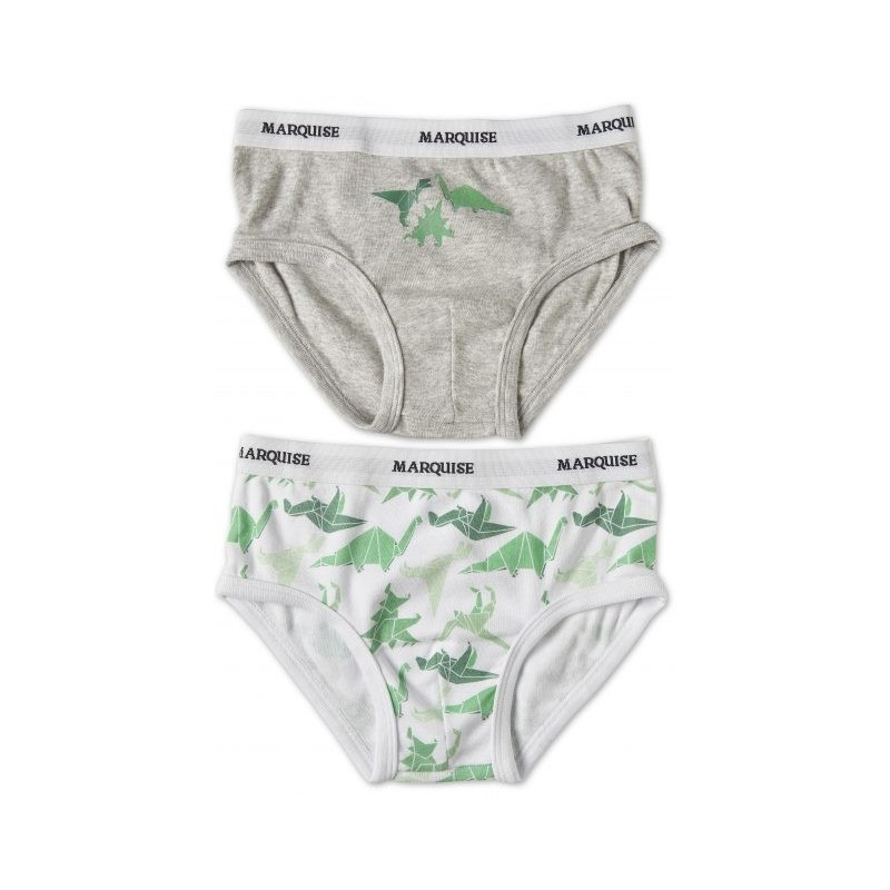 Marquise - 2 Pack Boys Underwear Dinosaurs Grey/Print