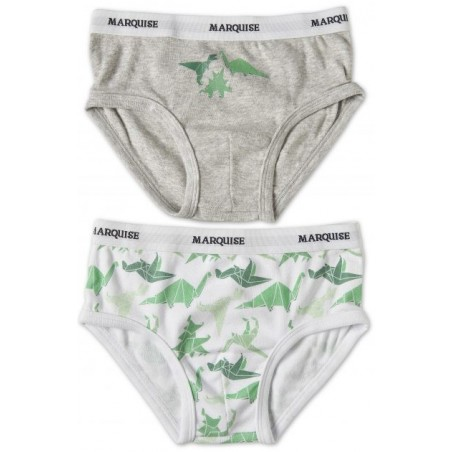 Marquise - 2 Pack Boys Underwear Dinosaurs Grey/Print