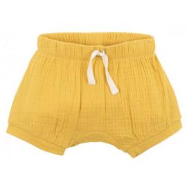 Bebe - Riley Shorts - Mustard