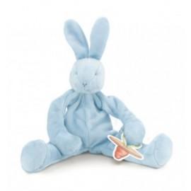 """Bunnies by the Bay"" Silly Buddy Blue Bunny"