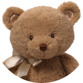 Baby Gund : My First Teddy...
