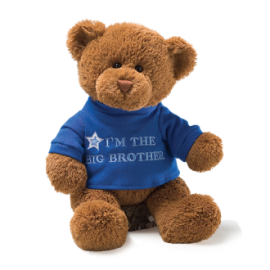 Gund Big Brother Bear Blue